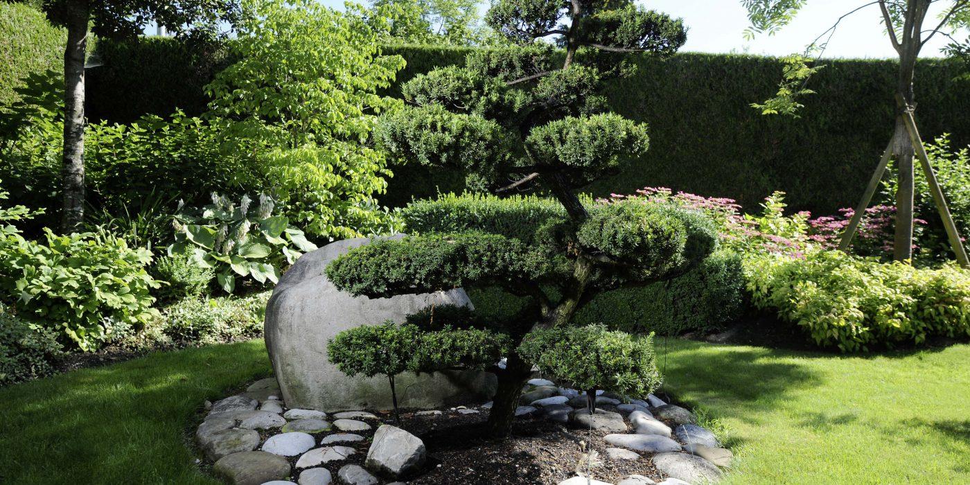 Entretien de jardin gen ve green art sa entreprise for Entretien jardin 41