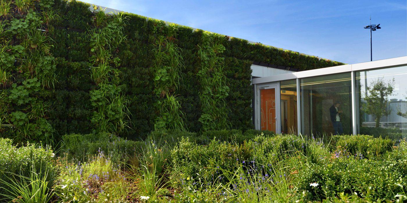 Mur v g talis gen ve green art sa entreprise for Entretien jardin geneve