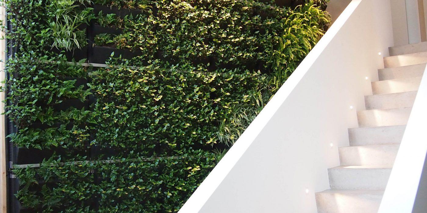 Mur végétalisé intérieur Genève - Suisse