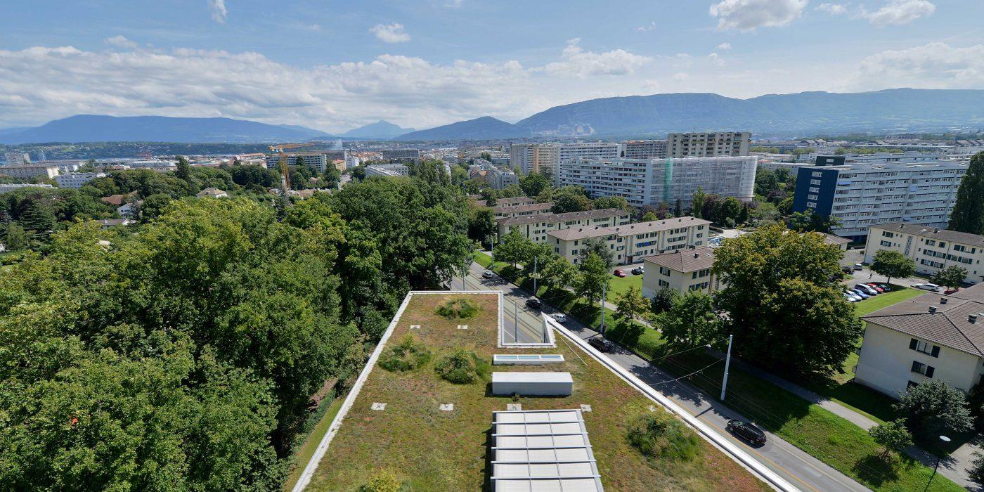 Toiture végétalisée Genève