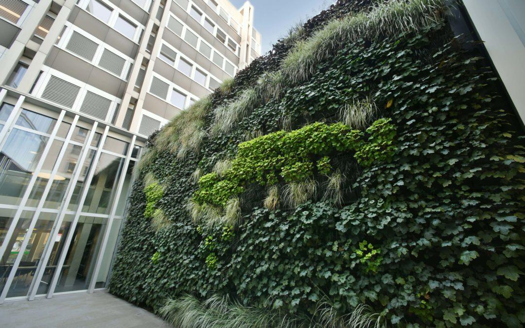 Mur végétalisé de l'ONU – une intégration végétale d'envergure