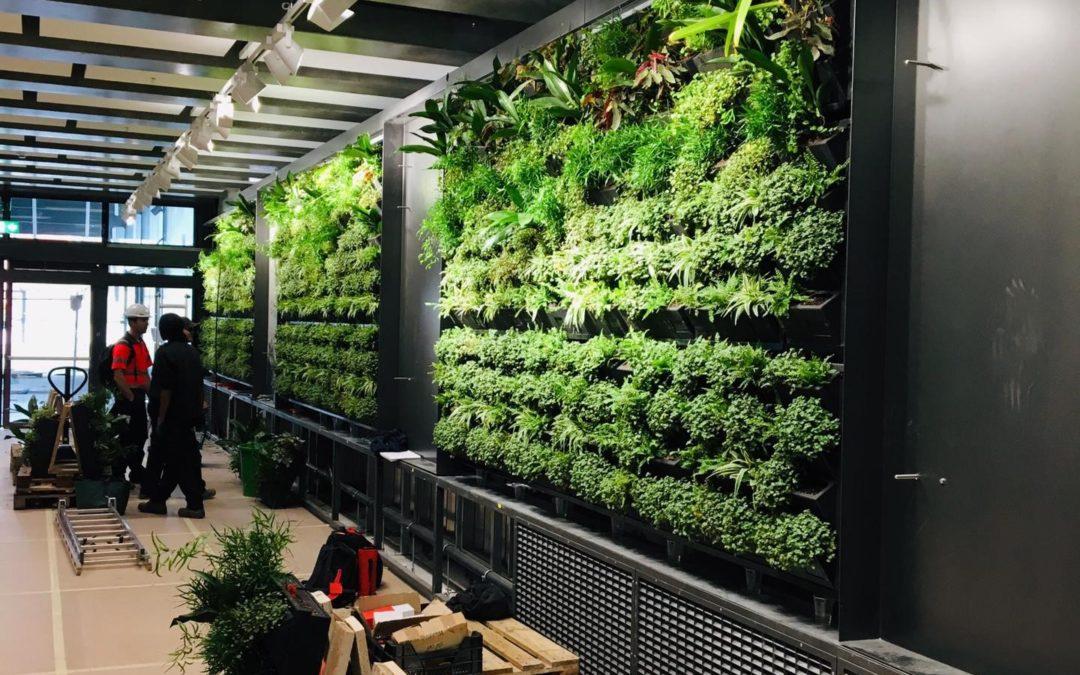 Murs végétalisés – CEVA O'Vives : notre entreprise lauréate de l'appel d'offres